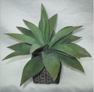 Faux Aloe in Cement Pot #91